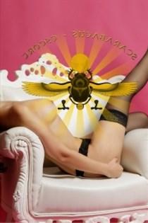 Caysee, sexjenter i Kvernaland - 9415